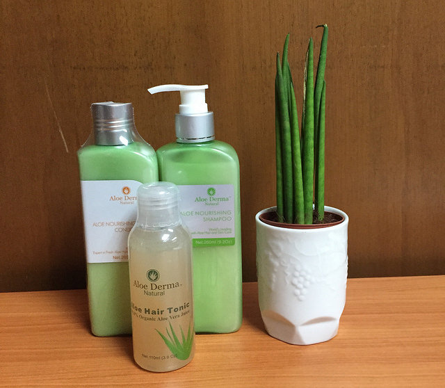 aloe derma hair tonic