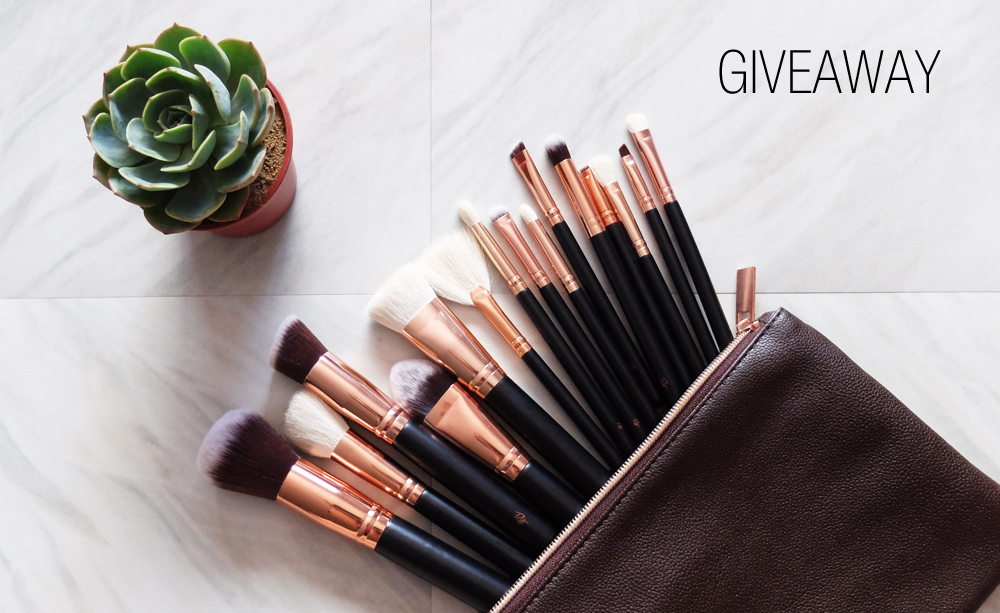 riot brushes giveaway 2