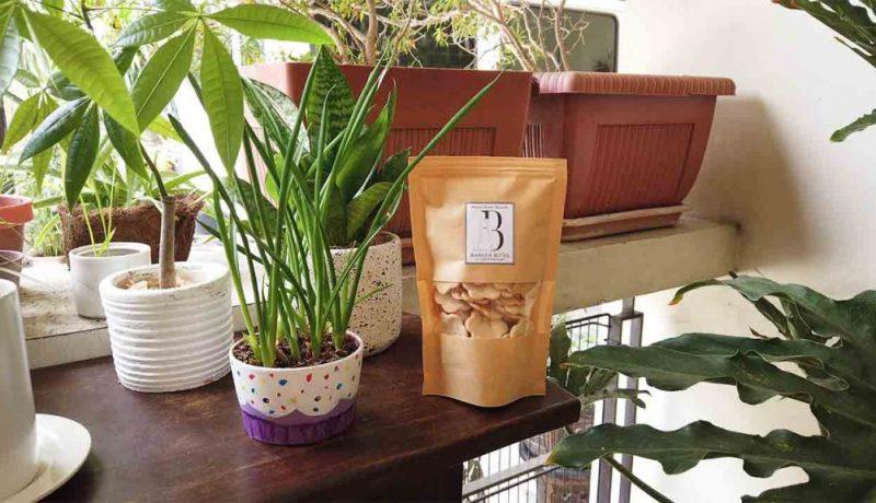 healthy dog treats in manila barker bites ph