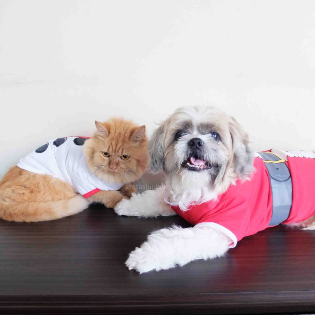 pet christmas outfits7