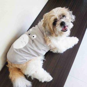 Totoro Pet Shirt